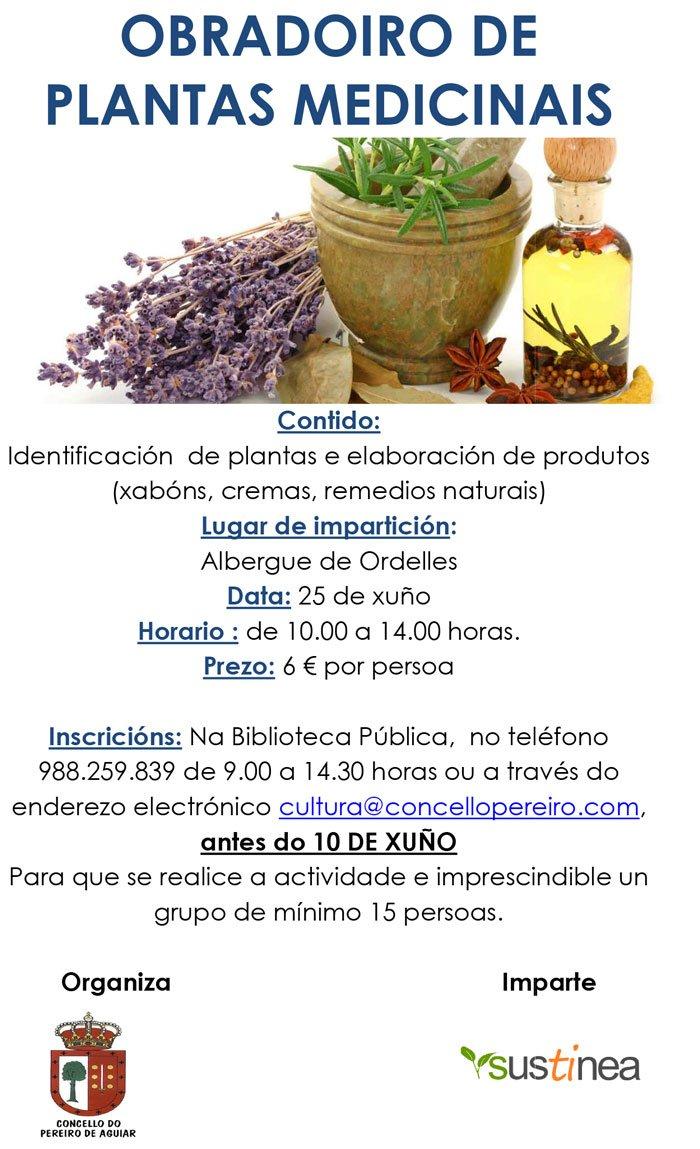 obradoiro-de-plantas-medicinais