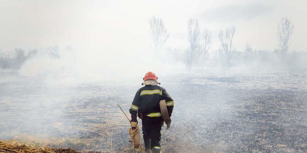 Resolución de Alcaldía: Contratación de aspirantes que superaron o proceso selectivo Brigada de incendios 2021 (Peón de brigada)